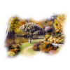 Nature Park Lake - Nature -