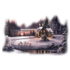 Winter - Nature -