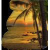 Beach - Nature -