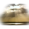 Sun light - Nature -
