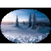 Winter - Natura -