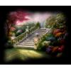 Stairs - Natura -