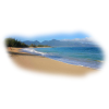 Ocean - Nature -