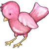 Pink bird - Illustrations -