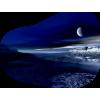 Planet - Illustrations -