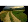 Road - 自然 -