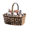 Shells - Items -