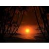 Sunset - Natura -