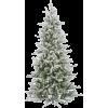 božićno drvce - Plants -