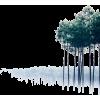 tree - Natur -