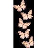 leptiri - Plants -