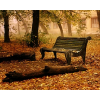 šuma jesen klupa - My photos -