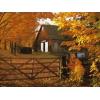 šuma jesen kuca - My photos -