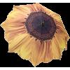 suncobran - Other -