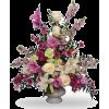 cvijeće - 植物 -