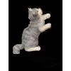 Kitten - Illustrations -