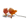 leaves - Przedmioty -