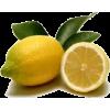 lemons - Fruit -