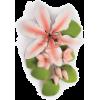 lily cake spray - Rastline -