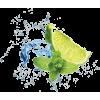 lime - Namirnice -