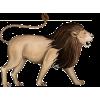 lion - Ilustracje -