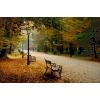 jesen - Ilustracije -