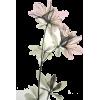 my flower - Illustrations - 20,00kn  ~ $3.15