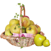 Basket - Items -