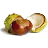 Chestnut - Comida -