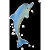 Dolphin - Animali -