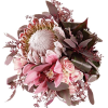 Flowers - 植物 -