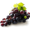 Grape - Fruit -