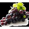 Grape - フルーツ -