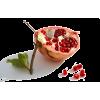 Pomegranate - Fruit -