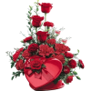 Red Roses - Plants -