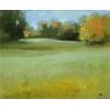 meadow - Plantas -
