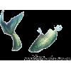 mermaid tail - Životinje -