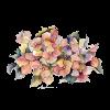 flower - Illustrations -