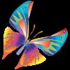 butterfly15 - Illustrazioni -