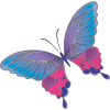 butterfly13 - Illustrations -