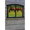 Horses - Hintergründe -
