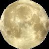 moon - Uncategorized -