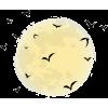 moon - Illustraciones -