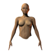 female front torso - Figure -