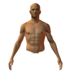 male front torso - Figure -