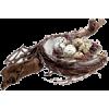 Nest - Nature -
