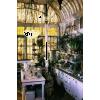 old greenhouse - Zgradbe -