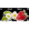 owoce - Food -