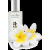 parfum - Düfte -