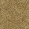 leopard - Pozadine -